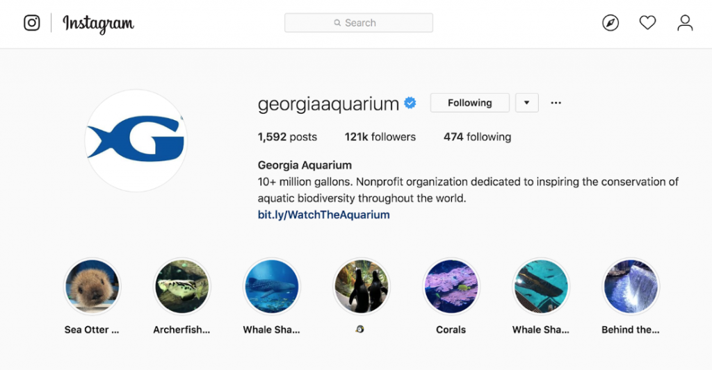 aquarium marketing strategies on instagram